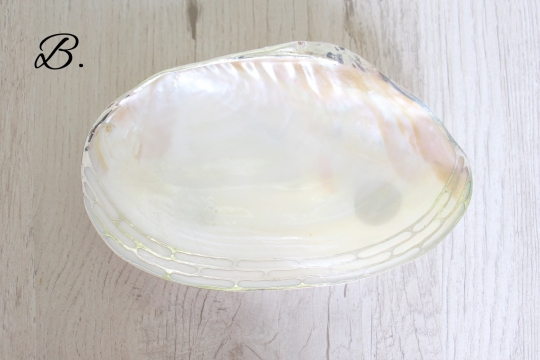 TWO'S shell tray