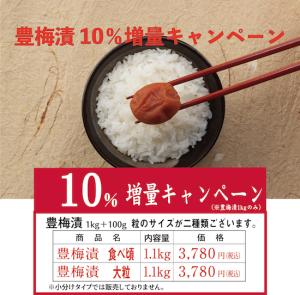 増量キャンペーン!豊梅漬1.1kg  食べ頃サイズ