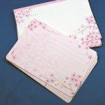 ミニレターセット  桜の調べ