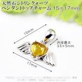 シトリン(黄水晶)ハート ウイングモチーフペンダントトップチャーム 15mm×17mm カン穴3.5×5mm 1個〜【139344774】