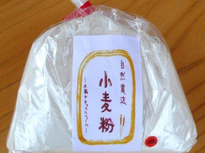 自然栽培 小麦粉(強力粉) 250g