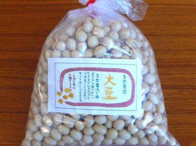 自然栽培 大豆 300g