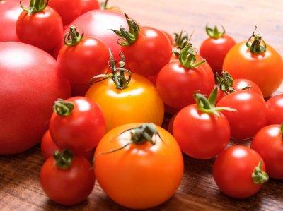 訳ありトマト