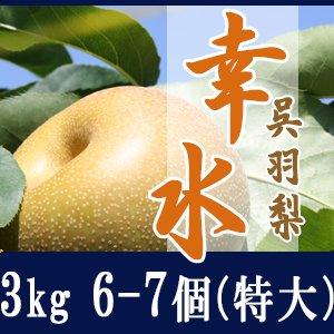 幸水3kg/(特大)6-7個玉【贈答用】