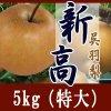新高5kg/(特大)8-9個入