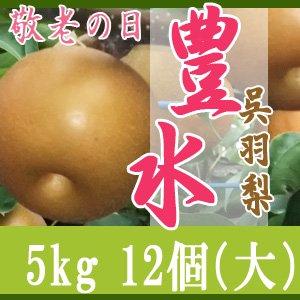 【敬老の日企画】豊水5kg/(大)12個玉