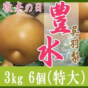 【敬老の日企画】豊水3kg/(特大)6個玉