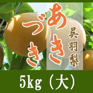 あきづき/5kg(中)14個-16個入