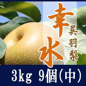 幸水3kg/(中)9個玉【家庭・贈答用】