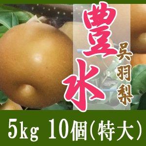 豊水5kg/(特大)10個玉【敬老の日特別企画】