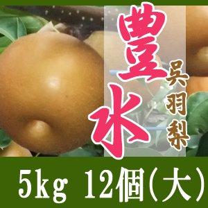 豊水5kg/(大)12個玉【敬老の日特別企画】