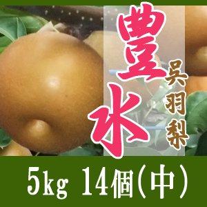 豊水5kg/(中)14個玉【敬老の日特別企画】