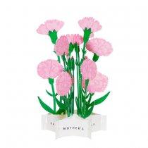 母の日 ブルーミングカード カーネーション ピンク