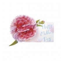 母の日 フラワーポップアップカード カーネーション ピンク