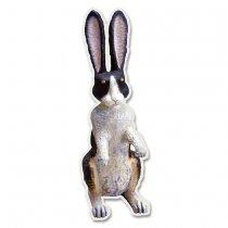 アニマルズポストカード ウサギ