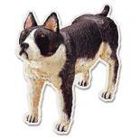 【のこりわずか】アニマルズポストカード イヌ