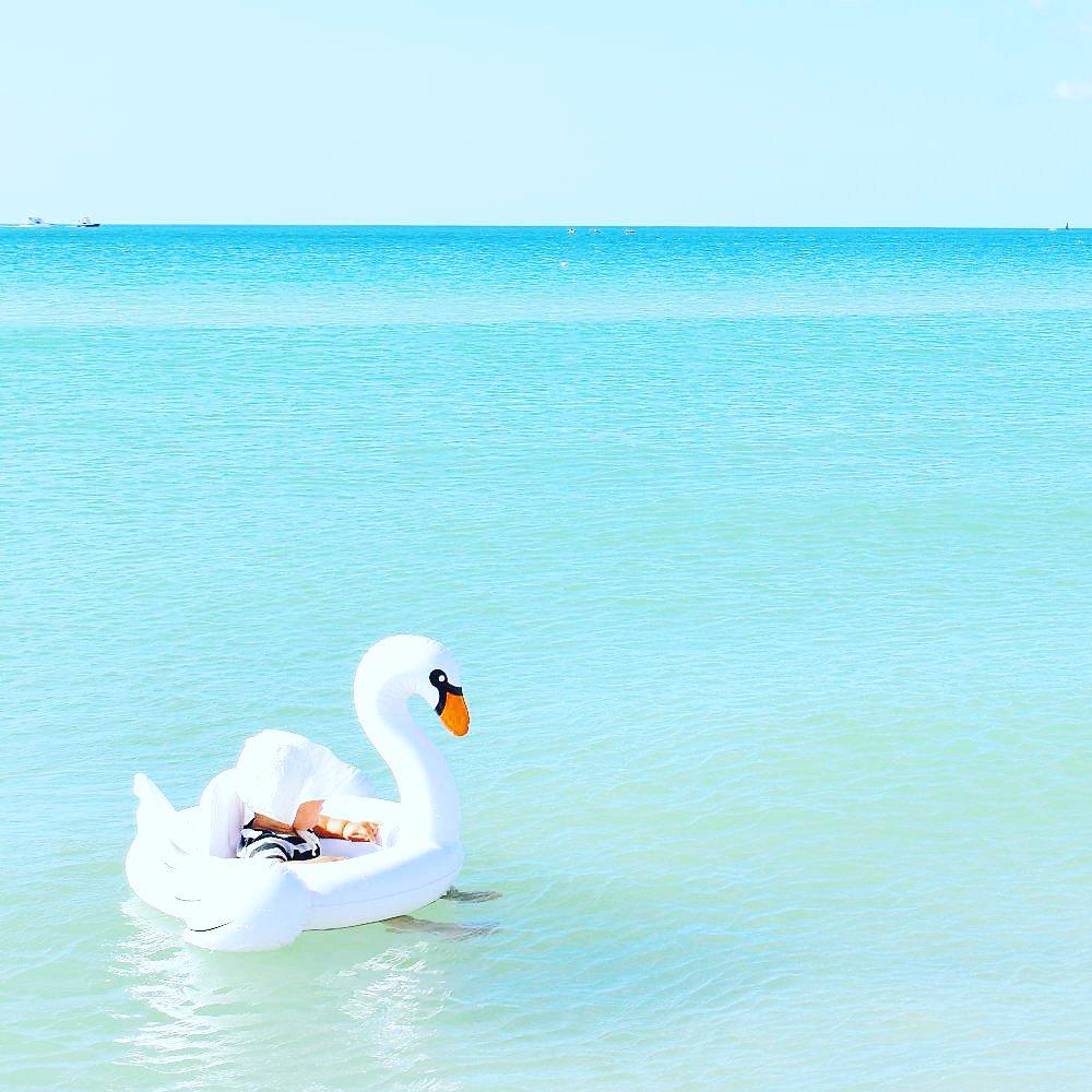 【価格改定】Baby Float Swan img6