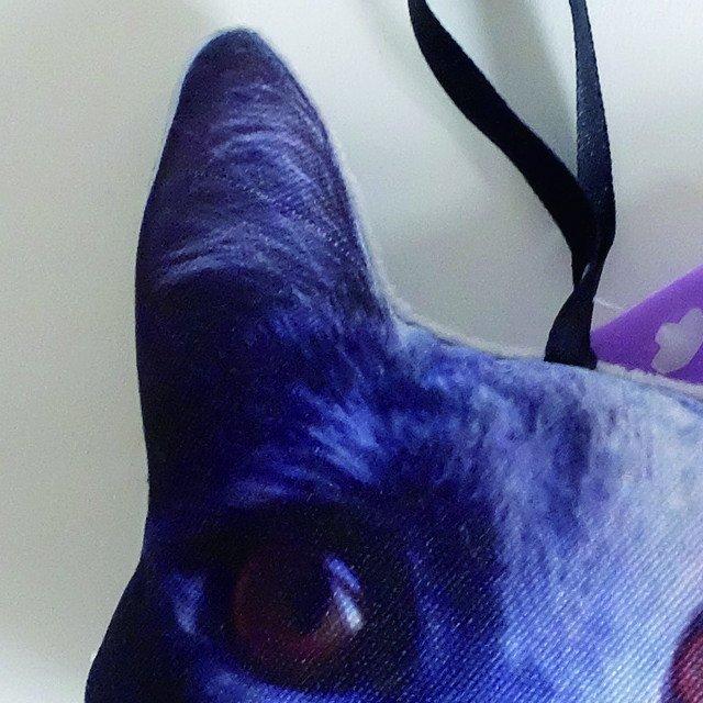 NiGuiNiGui にぎにぎ CAT FACE img1