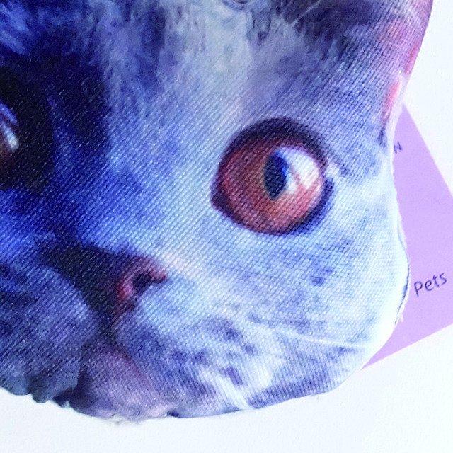 NiGuiNiGui にぎにぎ CAT FACE img2