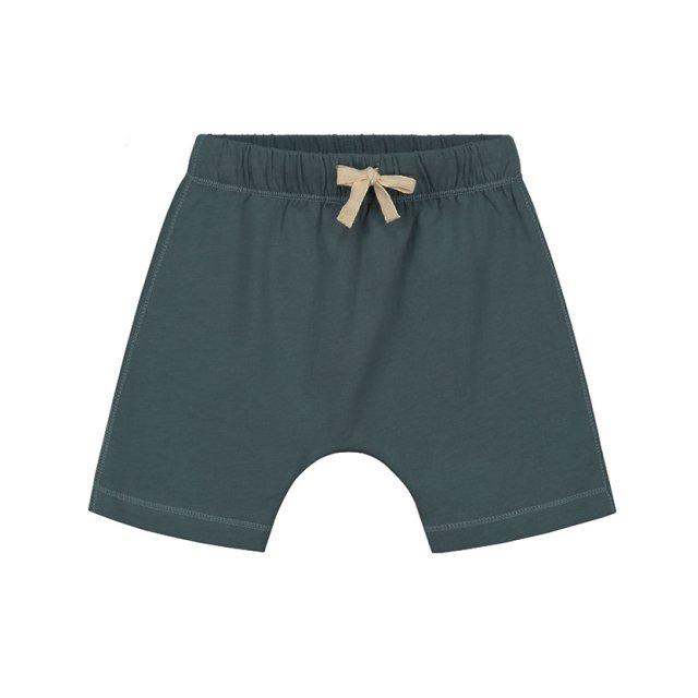 Shorts Blue Grey img