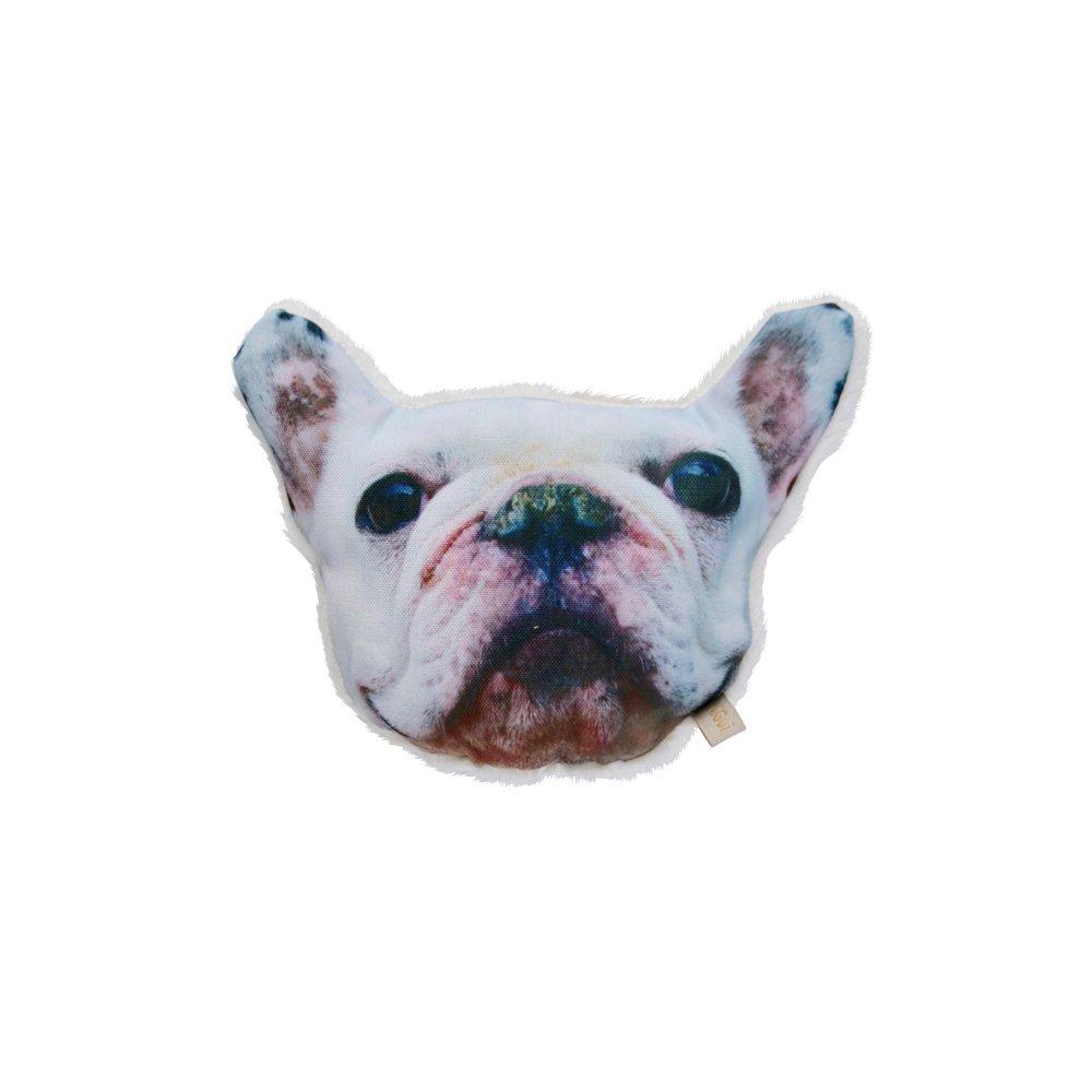 NiGuiNiGui にぎにぎ French bulldog img