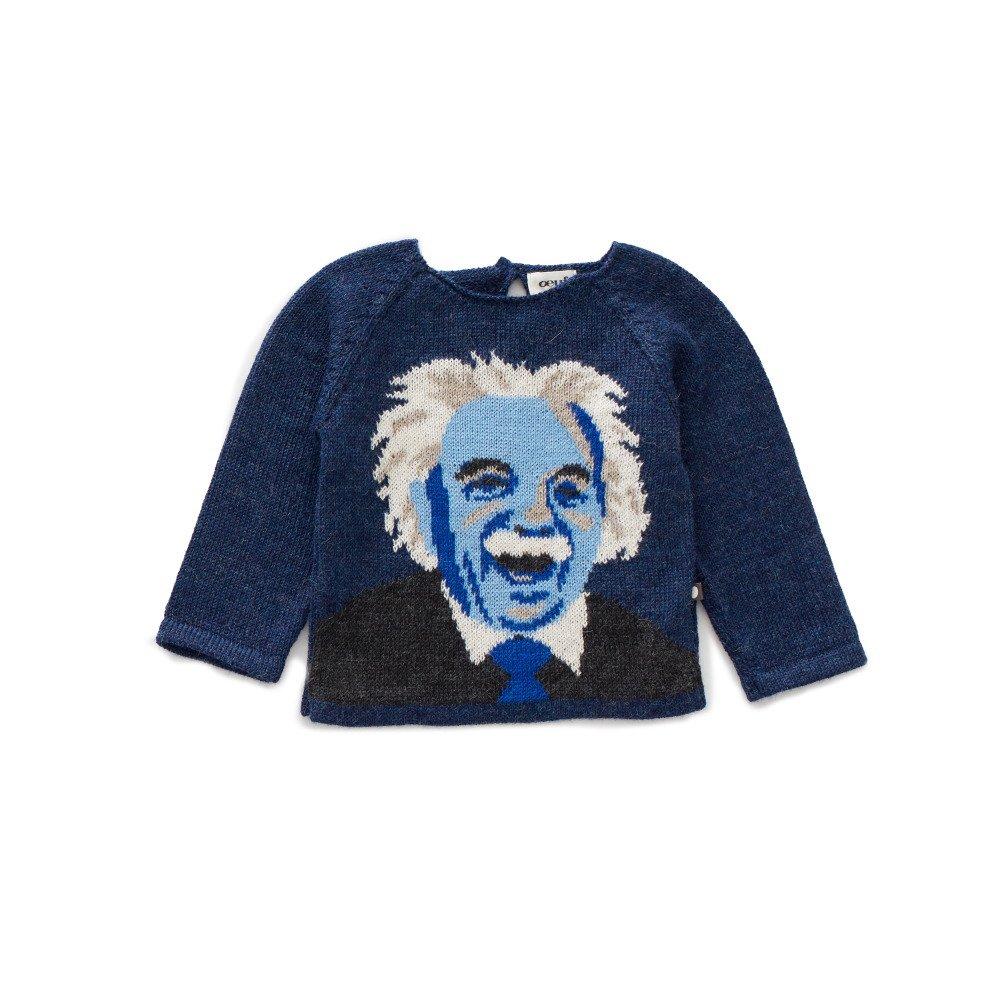 raglan sweater - einstein img