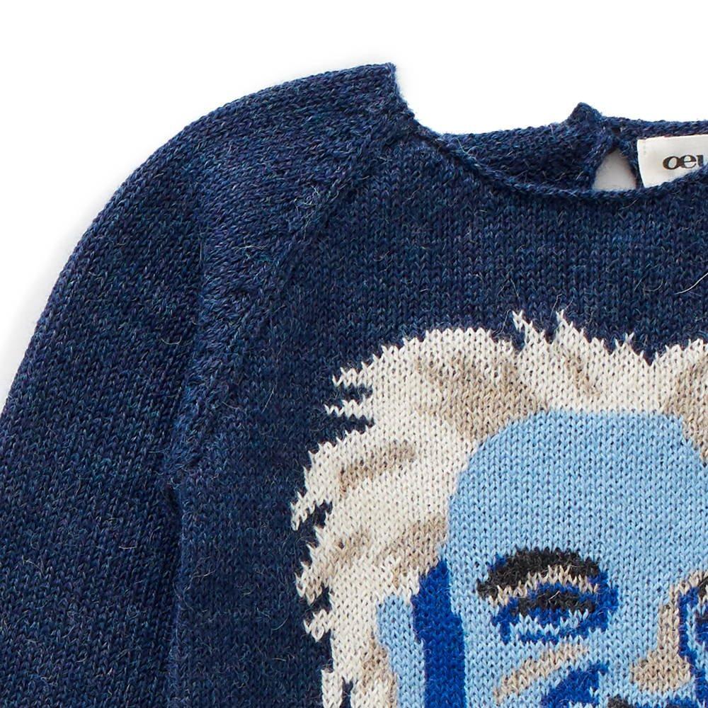 raglan sweater - einstein img1