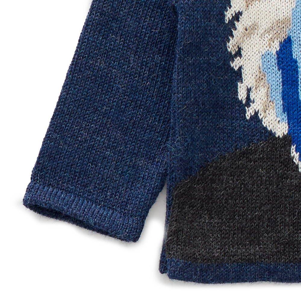 raglan sweater - einstein img2