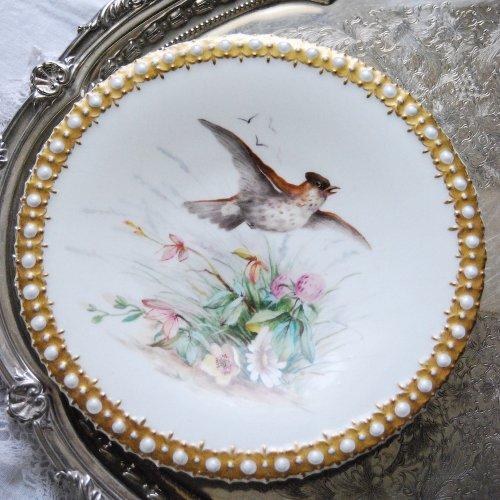 1880年代・ロイヤルウースター・絵画のような鳥と植物画のキャビネットプレート(送料込)