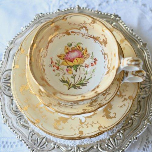 1840年代 リッジウェイ ロココリバイバル・手描きの植物画と金彩が眩しいトゥルートリオ&プレート(送料込)