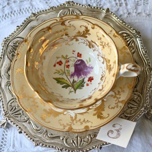 (お買い得品)1840年代・リッジウェイ・ロココリバイバル・手描きの植物画と金彩が眩しいティーカップ&ソーサー(3)(送料込)