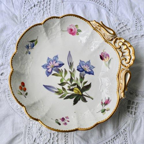 1830年代 コールポート シェル型 稀少ボタニカル画のお菓子皿(1)桔梗のお花(送料込)