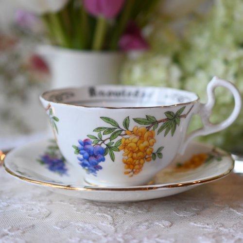 エインズレイ 藤の絵柄が綺麗なフォーチューンテリングカップ(送料込)