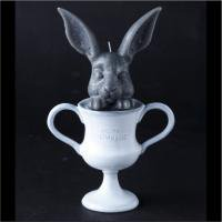 <img class='new_mark_img1' src='//img.shop-pro.jp/img/new/icons50.gif' style='border:none;display:inline;margin:0px;padding:0px;width:auto;' />Rabbit &  Falcon from the Vallons Trophy Candle Collection
