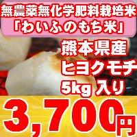 平成27年産 無農薬・無化学肥料栽培もち米 「わいふのもち米」 5kg入り