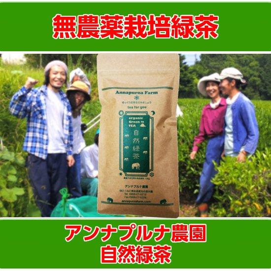 アンナプルナ農園 無農薬 自然緑茶 100g入り