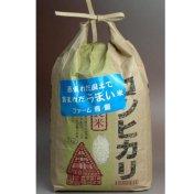 コシヒカリ 2kg