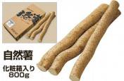 自然薯・化粧箱入り800g
