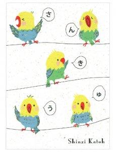 【ゆうパケット対応】バナナペーパーポストカード[Parakeet thank you]