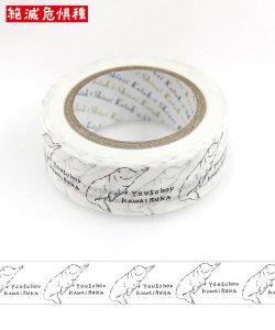 【ゆうパケット対応】絶滅危惧種 マスキングテープ(15mm幅)[YOUSUKOUKAWAIRUKA2]