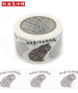 絶滅危惧種 Wideマスキングテープ(27mm幅)[KOBITOKABA]