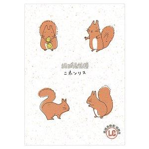 【1�ゆうパケット対応】絶滅危惧種バナナペーパーポストカード[ニホンリス]