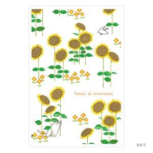 シンジカトウオンライン限定ポストカードコレクション225