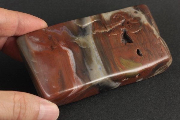 珪化木 原石 磨き 318g