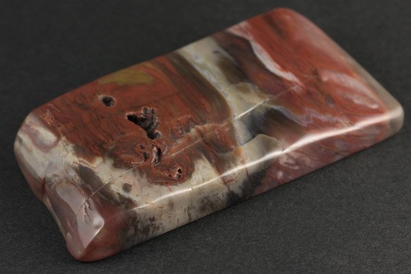 珪化木 原石 磨き 387g