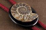 ループタイ アンモナイト化石×オニキス