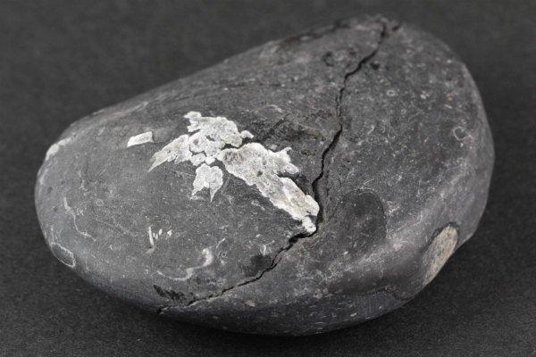 菊花石 原石 98g