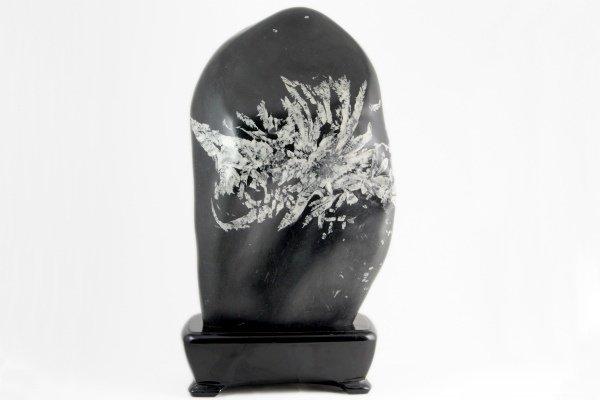 菊花石 原石 156g