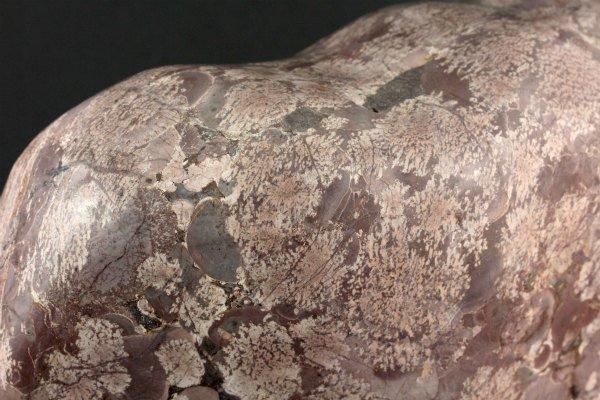 岐阜県奥飛騨産 白山菊紋石 置石 2.78kg