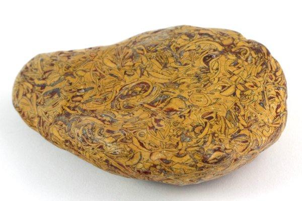 フォッシルジャスパー 原石 磨き 82g